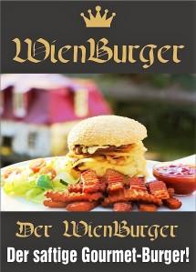 2017-01-18-wienburger1