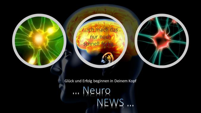 1. Bild Neuronews