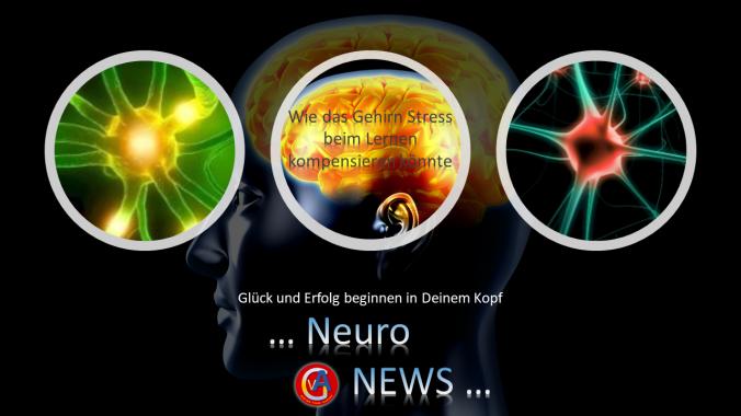 3. Bild Neuronews